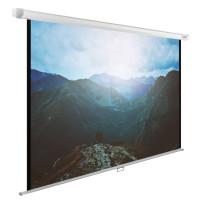Cactus 240x240 Wallscreen